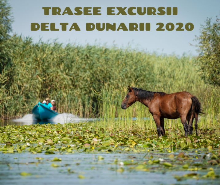 TRASEE EXCURSII DELTA DUNARII 2020 TARIFE IN RON/PERSOANA